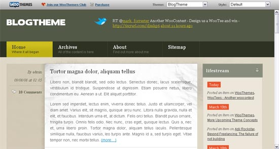 blog-theme-copy