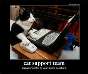cat-support
