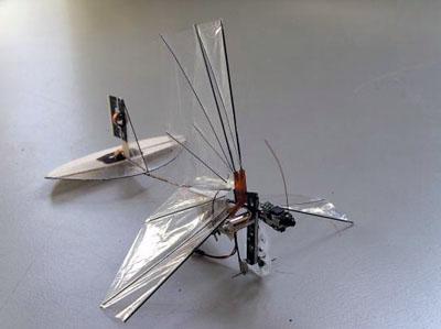 delfly